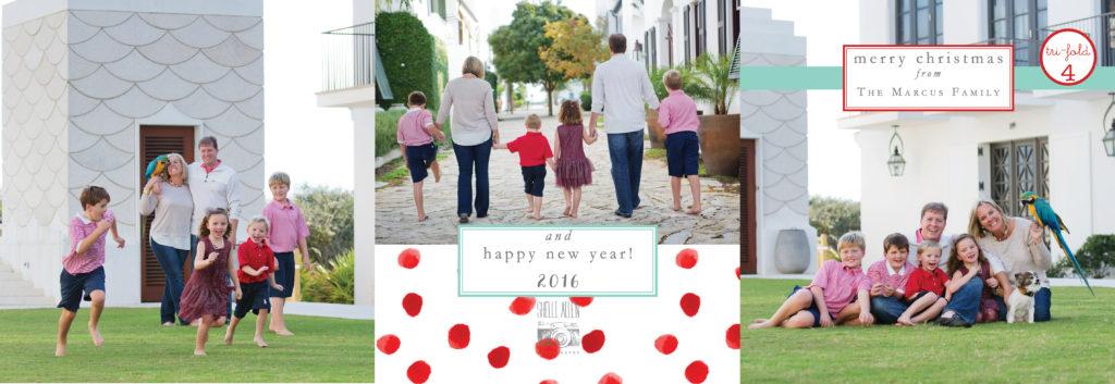 sap-christmas-cards-2016-tri-folds17